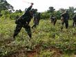 Bolivia phản đối báo cáo của Mỹ về đấu tranh chống ma túy