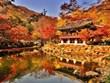 Du lịch mùa Thu: Những điểm đến đẹp như tranh vẽ từ Âu sang Á