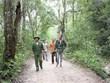 Gia Lai: Cảm hóa lâm tặc thành người bảo vệ rừng đắc lực
