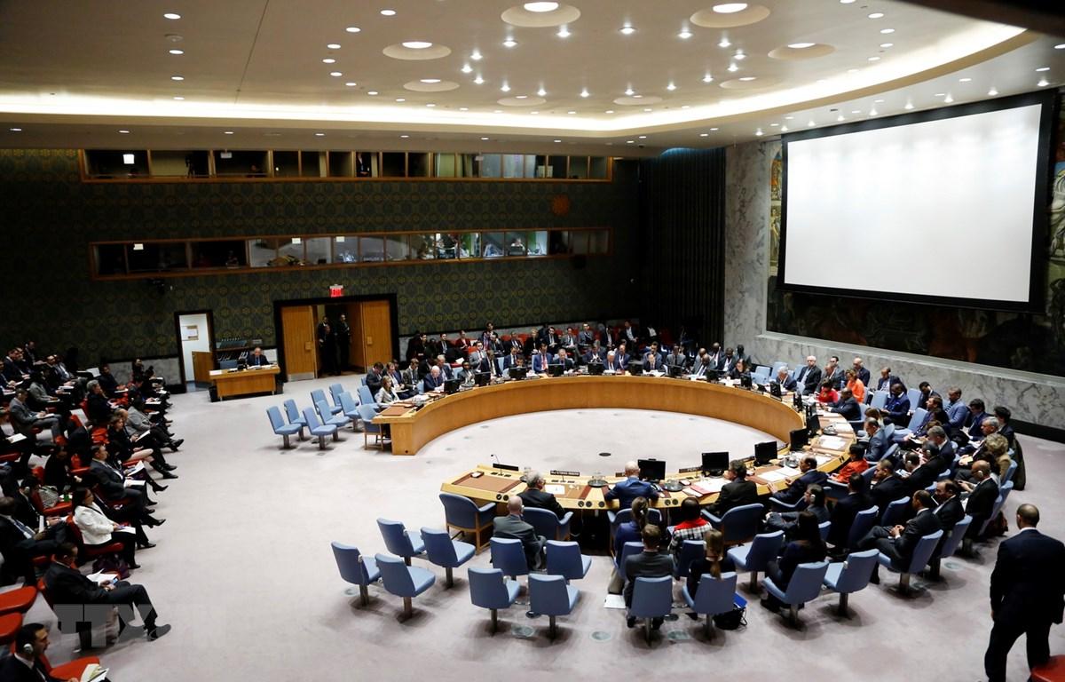 Toàn cảnh một phiên họp của Hội đồng Bảo an LHQ ở New York, Mỹ, ngày 25/1/2019. (Ảnh: THX/TTXVN)