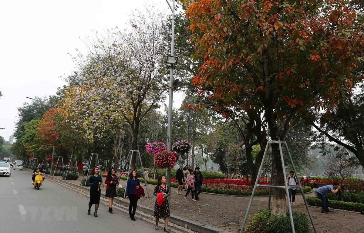 Khu vực Hà Nội nhiều mây, ngày có mưa, mưa rào và có nơi có dông. (Ảnh minh họa: Thành Đạt/TTXVN)