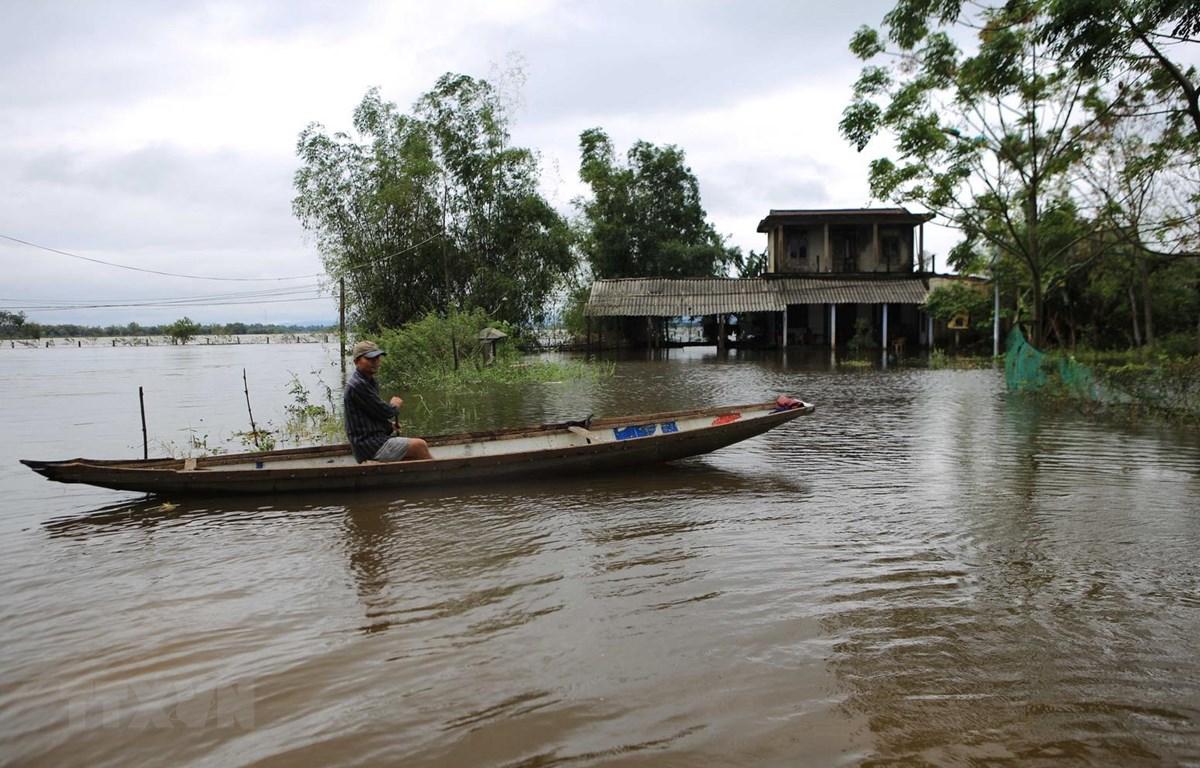 Hình ảnh ngập lụt tại huyện Quảng Điền (Thừa Thiên-Huế). (Ảnh: Hồ Cầu/TTXVN)