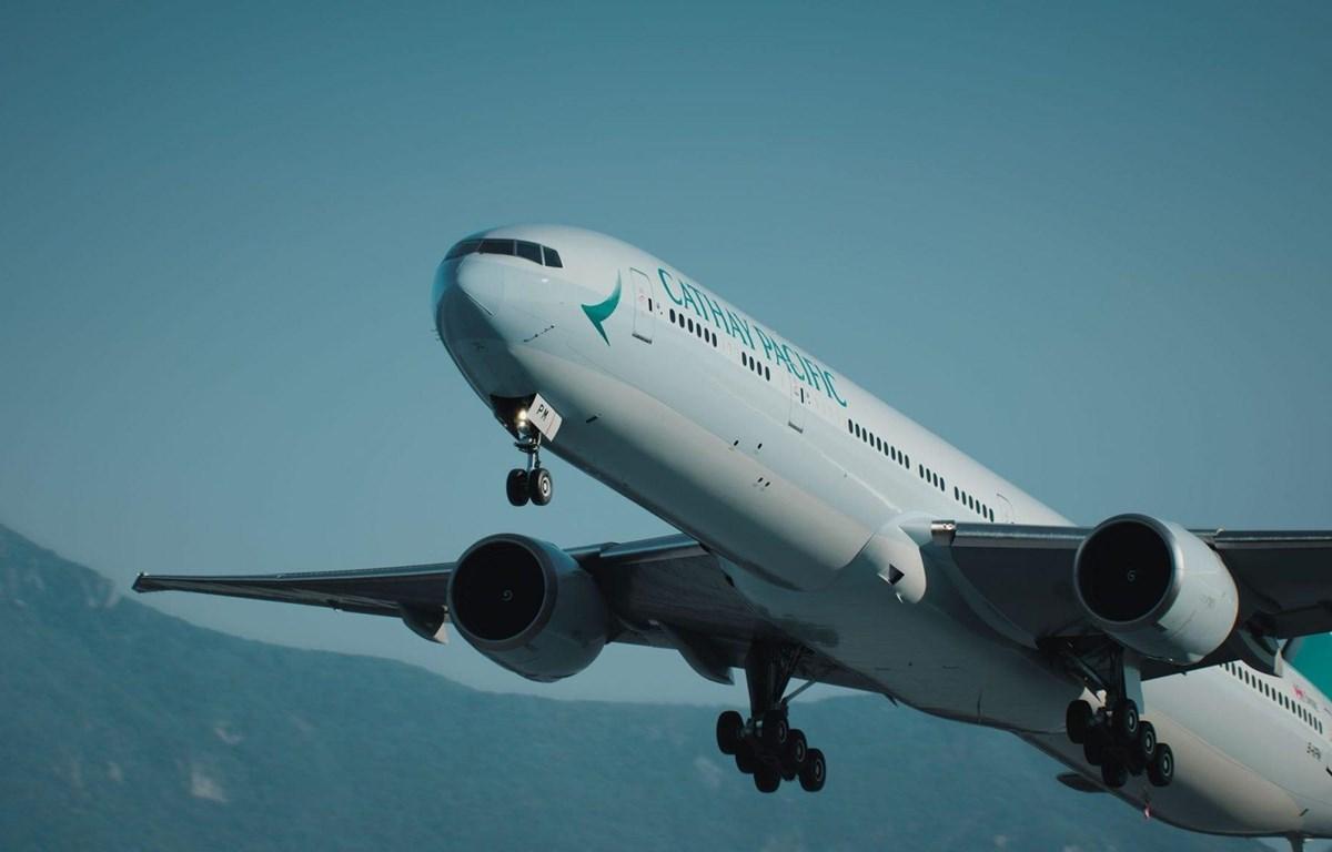 Hãng hàng không Cathay Pacific. (Nguồn: Skift)