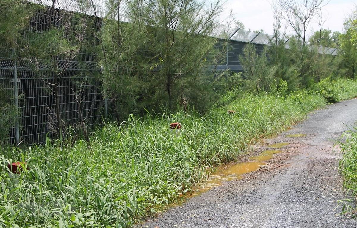 Nước thải từ bãi rác Đa Phước rỉ chảy gây ô nhiễm. (Ảnh: Trần Xuân Tình/TTXVN)
