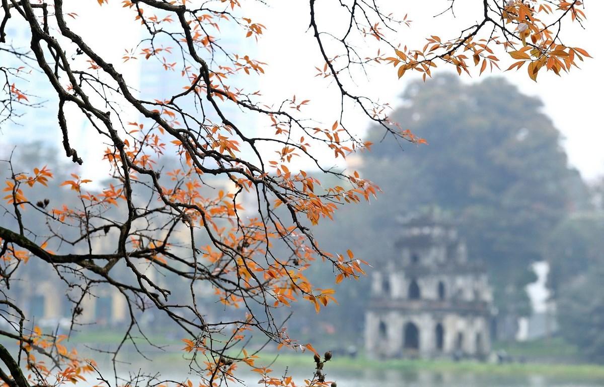 Trong ảnh: Vẻ đẹp quyến rũ của Hồ Gươm. (Ảnh: Minh Quyết - TTXVN)