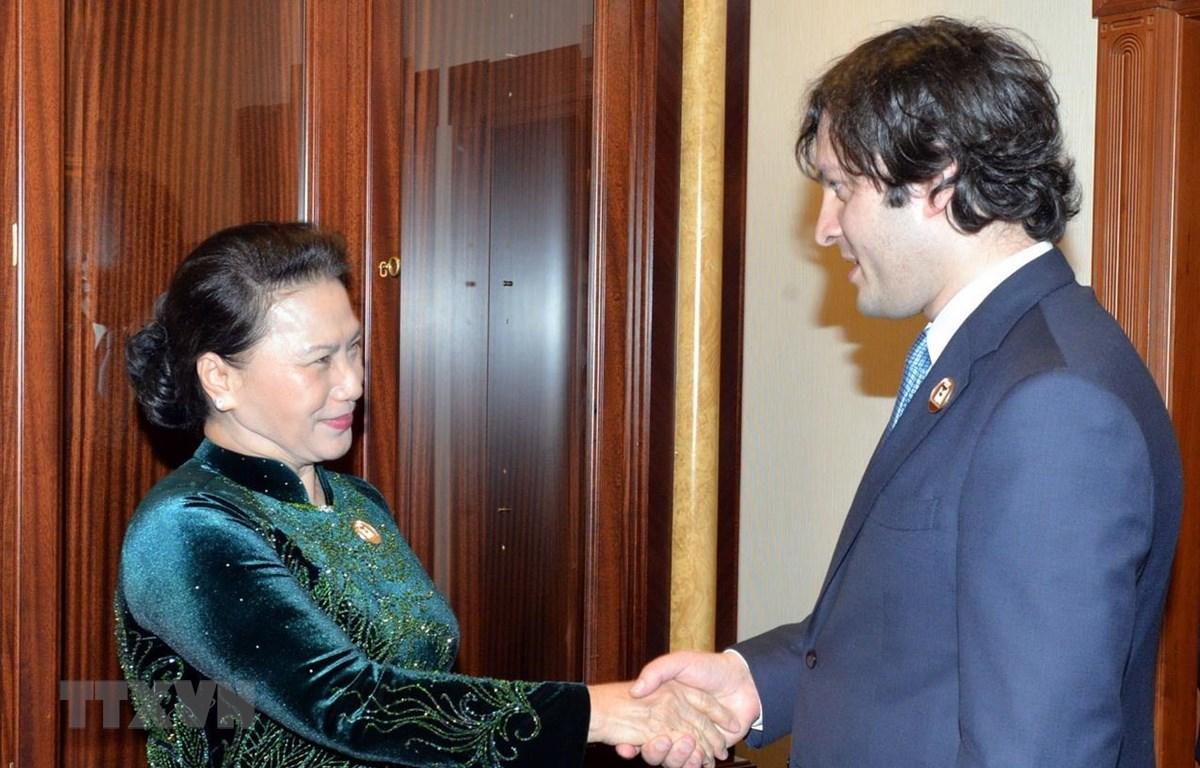 Chủ tịch Quốc hội Nguyễn Thị Kim Ngân hội kiến Chủ tịch Quốc hội Gruzia. (Ảnh: Trọng Đức/TTXVN)