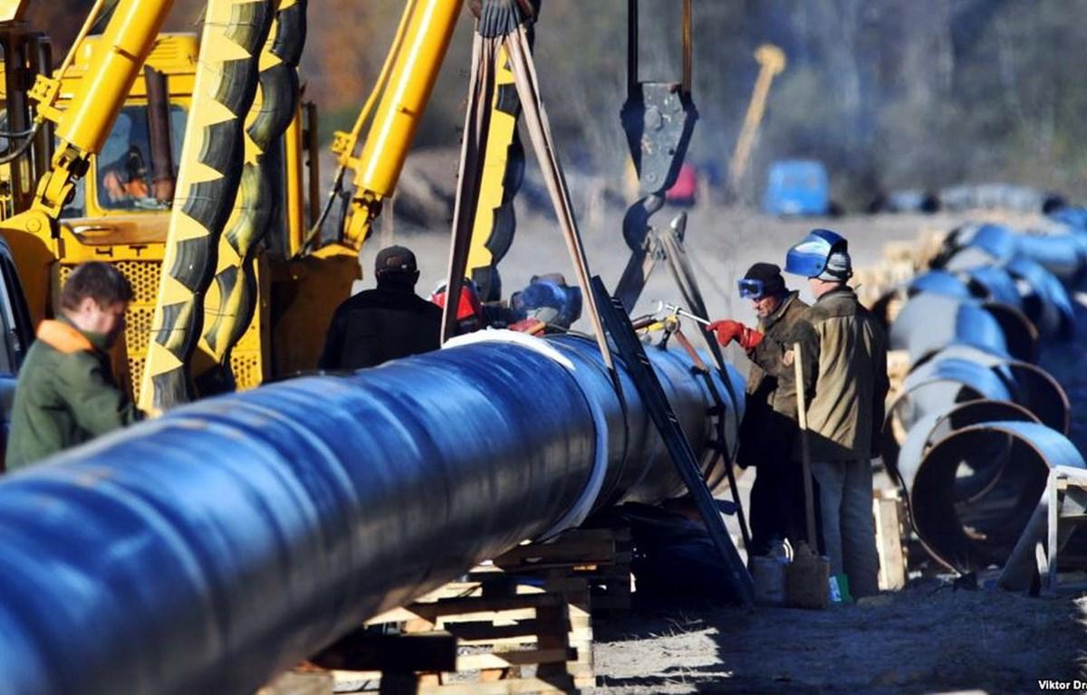 Đường ống dẫn dầu Druzhba. (Nguồn: TASS)