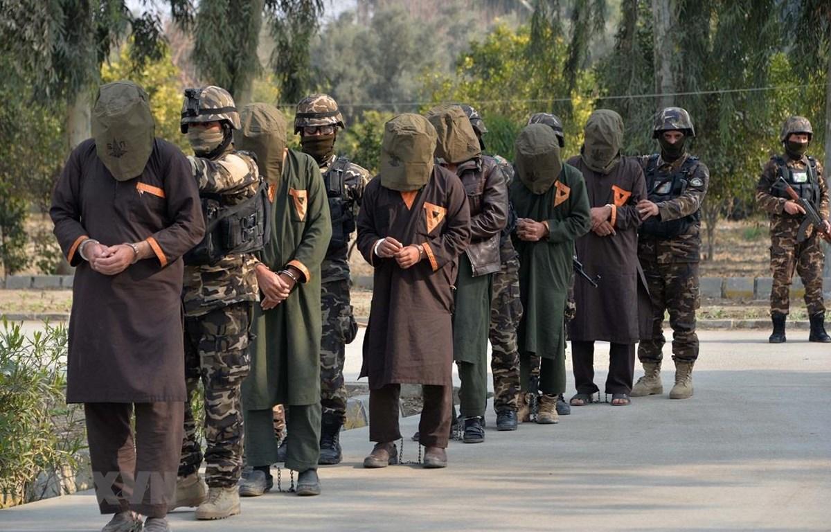 Binh sỹ Afghanistan áp giải các tay súng Taliban bị bắt giữ tại Jalalabad ngày 23/1/2019. (Ảnh: AFP/TTXVN)