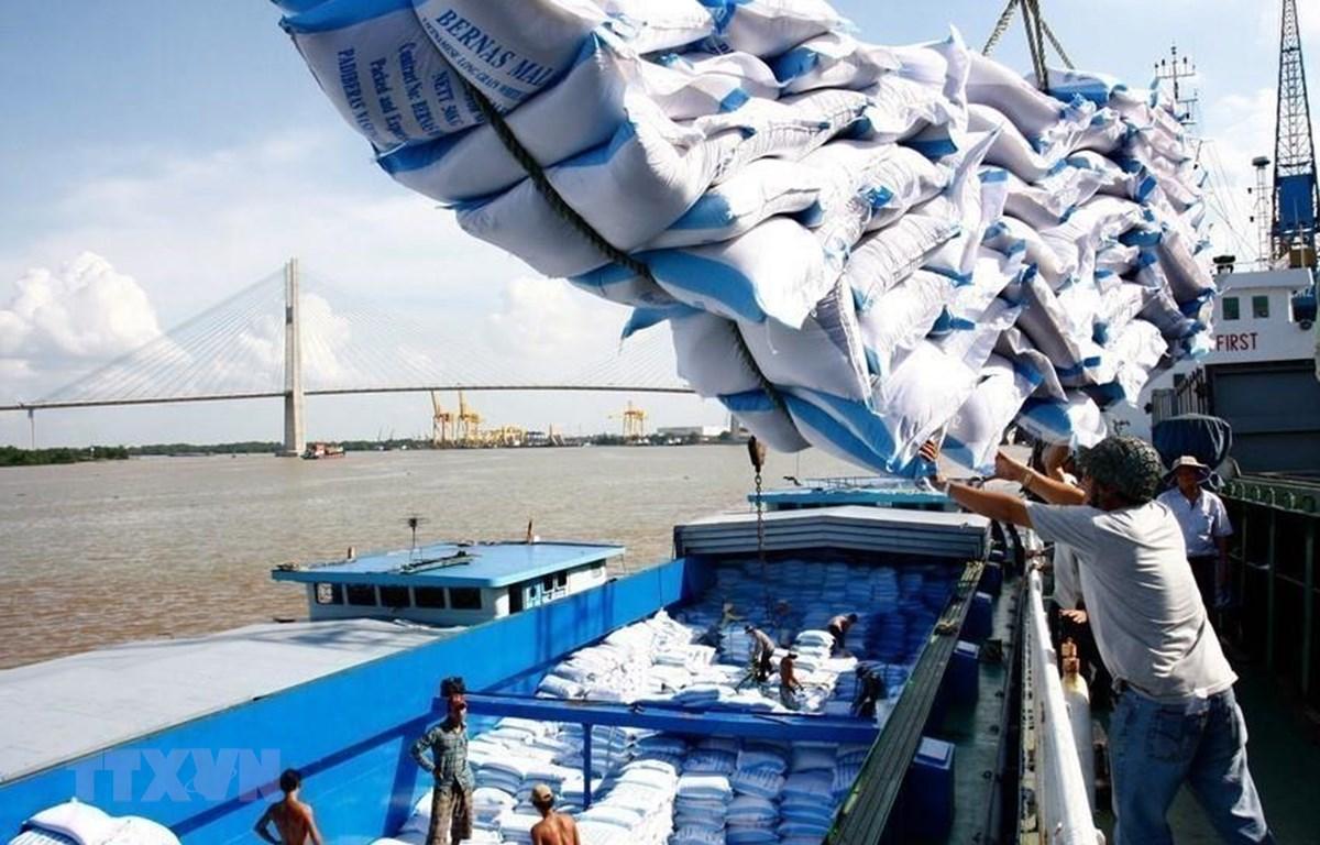 Vận chuyển gạo để xuất khẩu. (Ảnh: TTXVN)