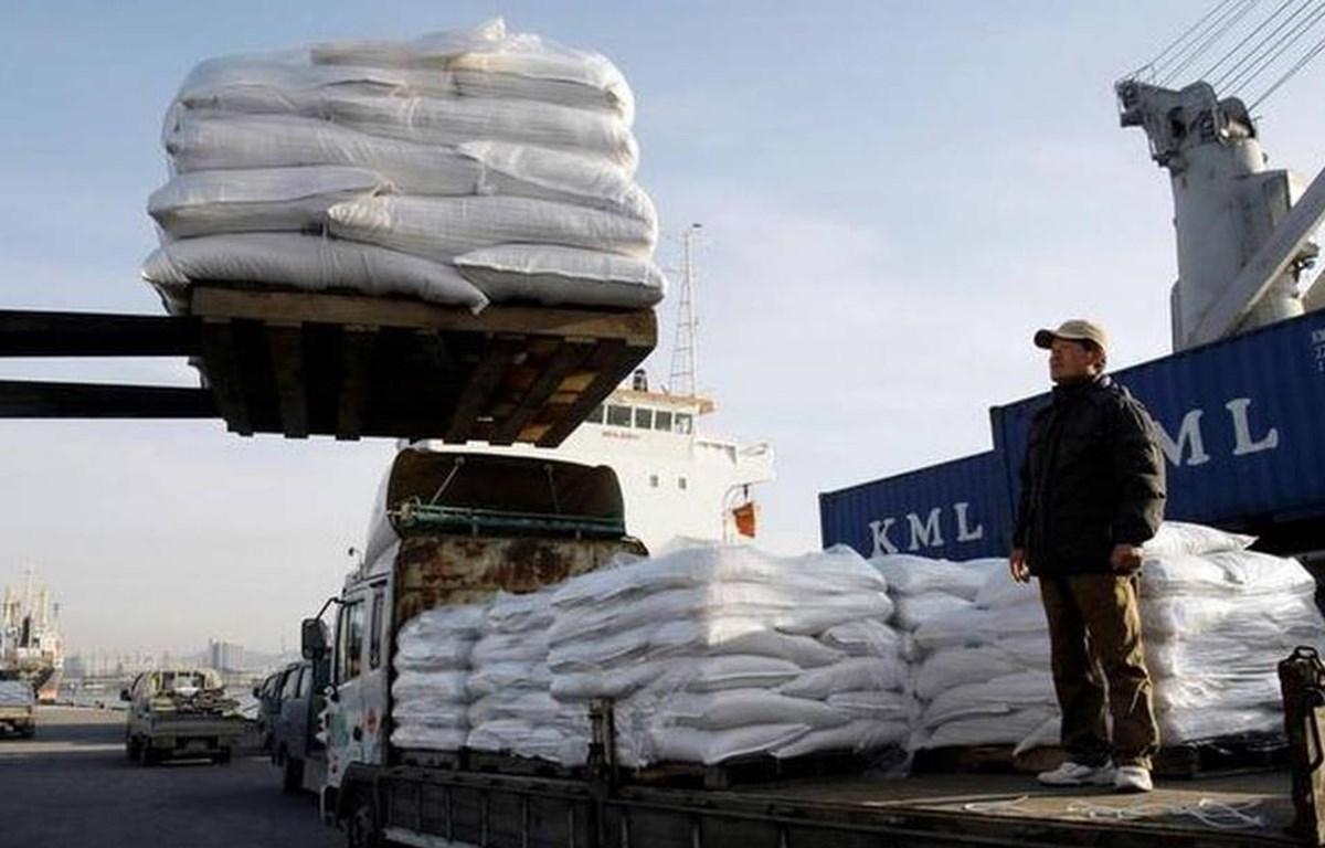 Lương thực hỗ trợ cho Triều Tiên. (Nguồn: AP)