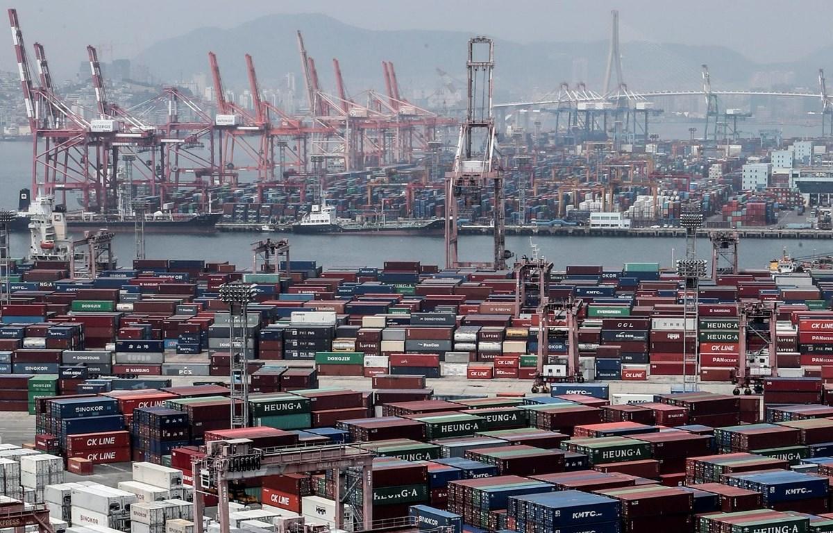 Container hàng hóa tại cảng Busan, Hàn Quốc ngày 1/6/2020. (Ảnh: YONHAP/TTXVN)