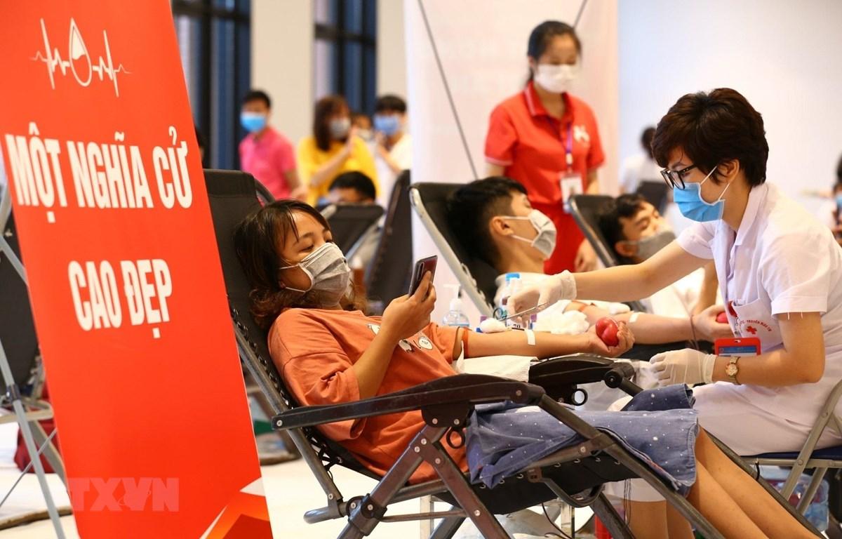 Người hiến máu tham gia chương trình Giọt hồng tri ân. (Ảnh: Minh Quyết/TTXVN)