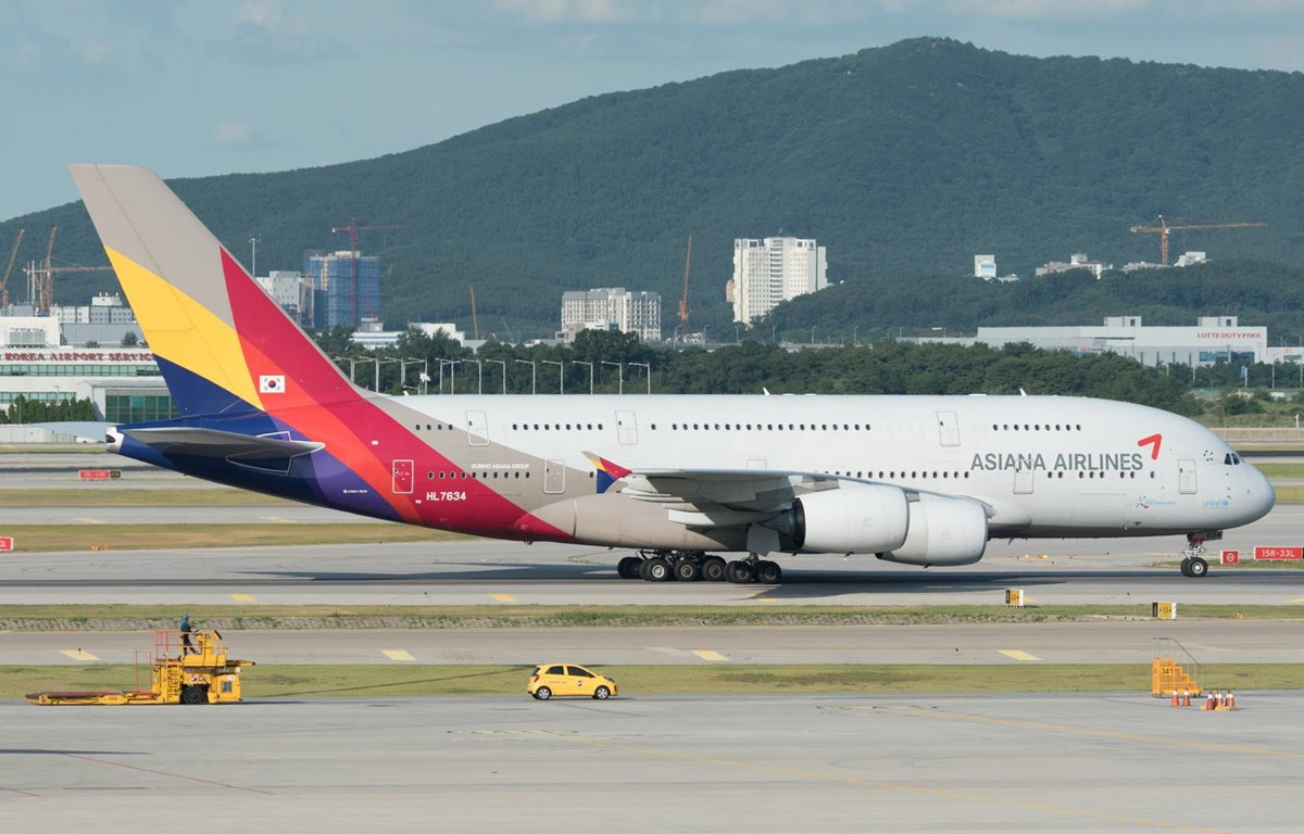 Máy bay của hãng hàng không Asiana Airlines. (Nguồn: AirlineGeeks)