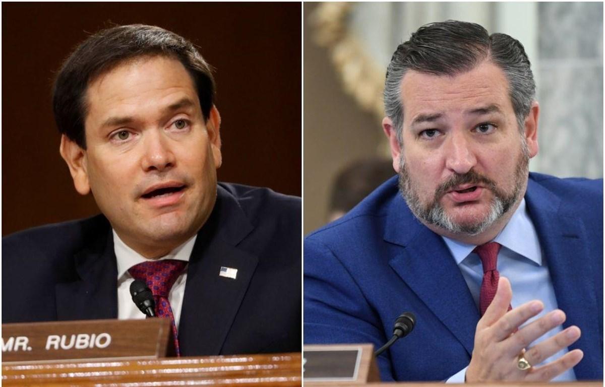 Thượng nghị sỹ Ted Cruz và Marco Rubio nằm trong số 11 quan chức Mỹ bị Trung Quốc áp đặt lệnh trừng phạt. (Nguồn: Reuters)