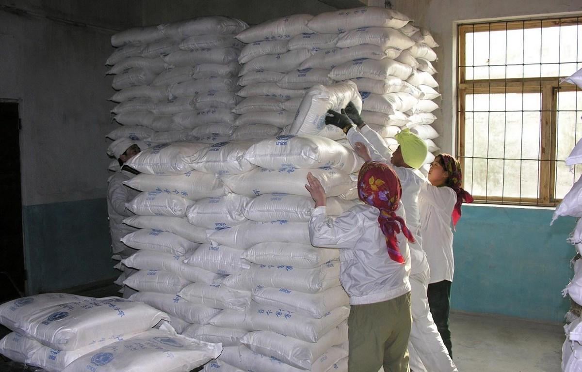 Lương thực viện trợ cho Triều Tiên thông qua Chương trình Lương thực Thế giới, tại Huichon, tỉnh Chagang (Triều Tiên). (Ảnh: AFP/TTXVN)