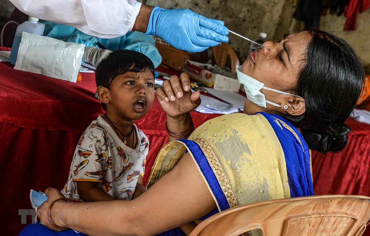 Nhân viên y tế lấy mẫu xét nghiệm COVID-19 tại Mumbai, Ấn Độ, ngày 19/8/2020. (Ảnh: AFP/TTXVN(