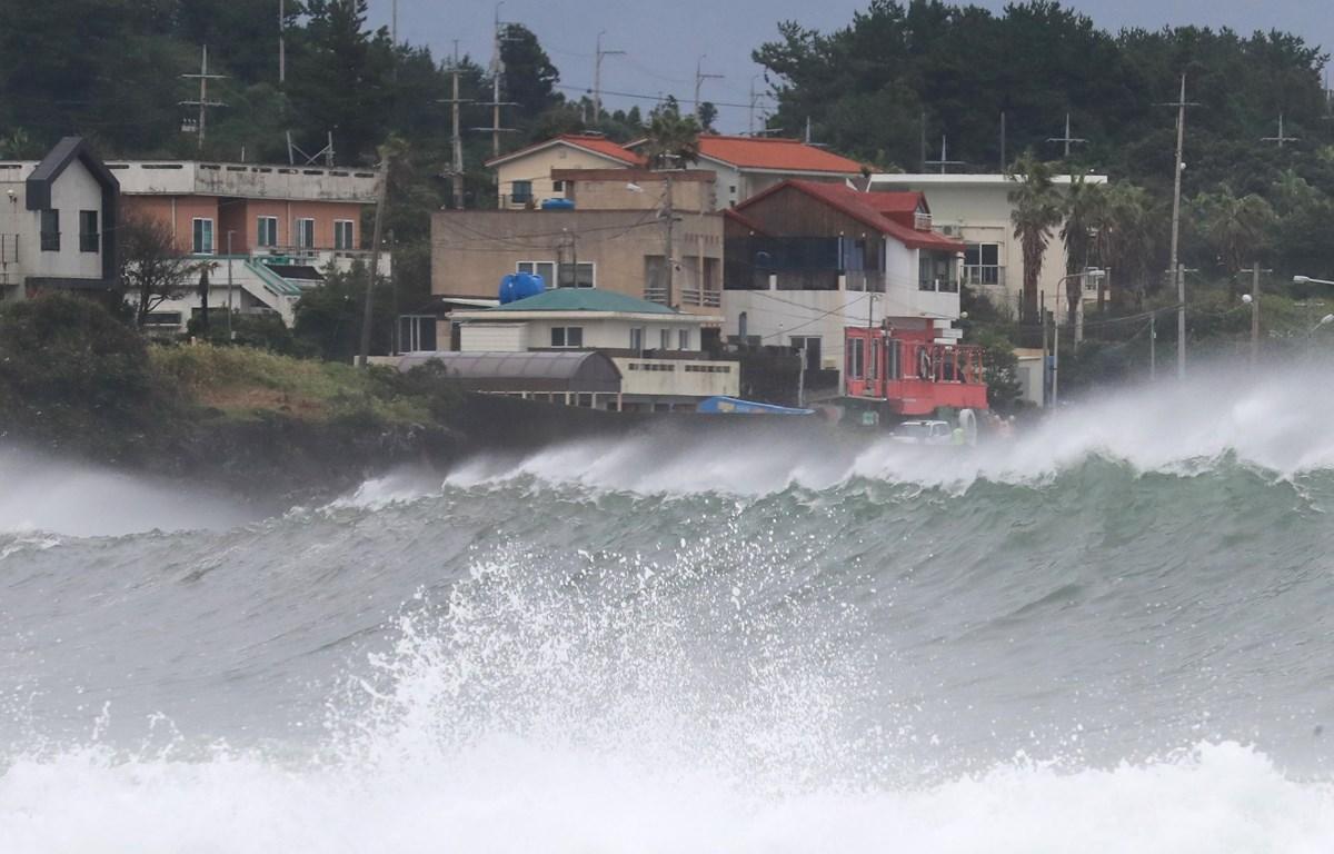 Sóng lớn xô vào bờ biển tại thành phố Seogwipo, đảo Jeju, Hàn Quốc, do ảnh hưởng của bão Haishen ngày 6/9/2020. (Ảnh: Yonhap/TTXVN)