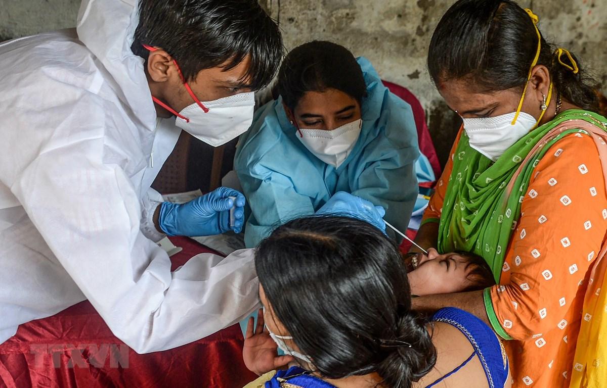 Nhân viên y tế lấy mẫu xét nghiệm COVID-19 tại Mumbai, Ấn Độ, ngày 19/8/2020. (Ảnh: AFP/TTXVN)
