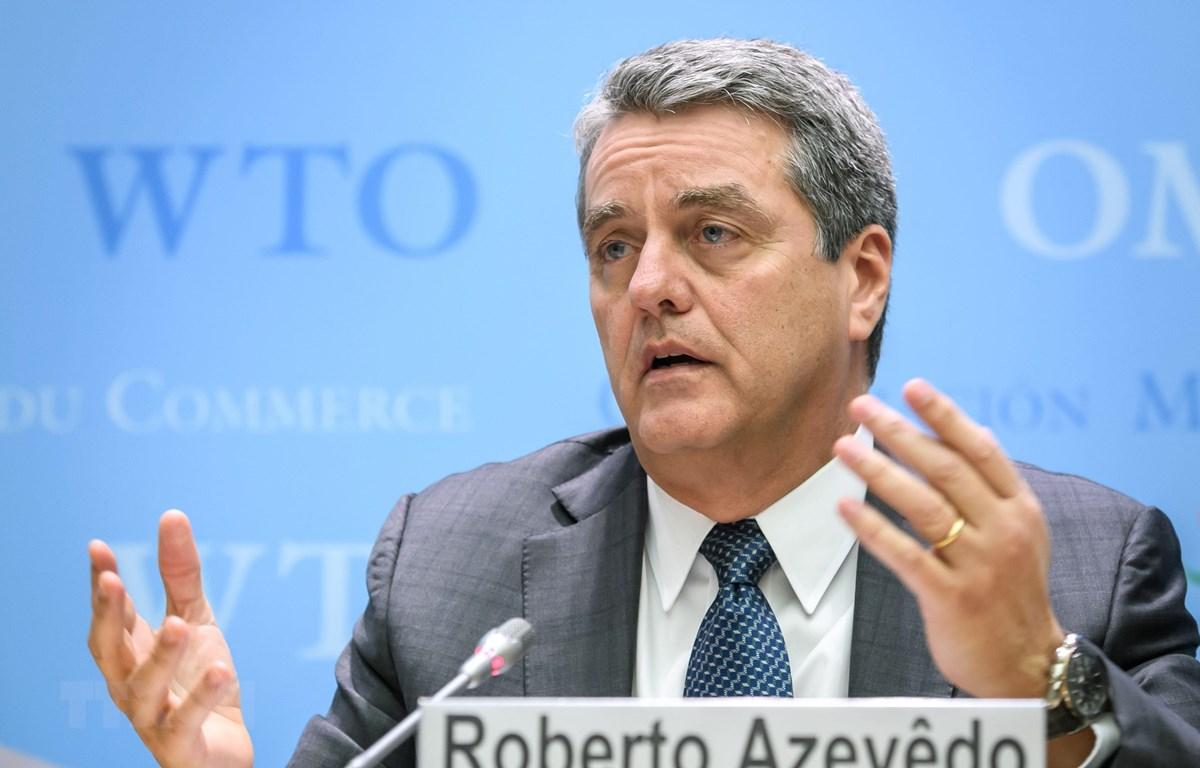 WTO đang lựa chọn ứng cử viên thay thế cựu Tổng giám đốc Roberto Azevedo sau khi ông này từ chức. (Ảnh: AFP/TTXVN)