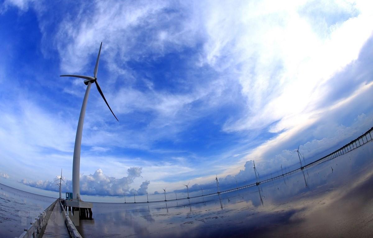 Nhà máy điện gió ở Bạc Liêu. (Ảnh: TTXVN)