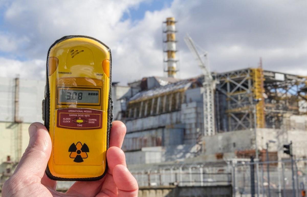 Lượng phóng xạ ở nhà máy điện hạt nhân Chernobyl có tác động gây hại đối với loài ong. (Nguồn: Getty Images)