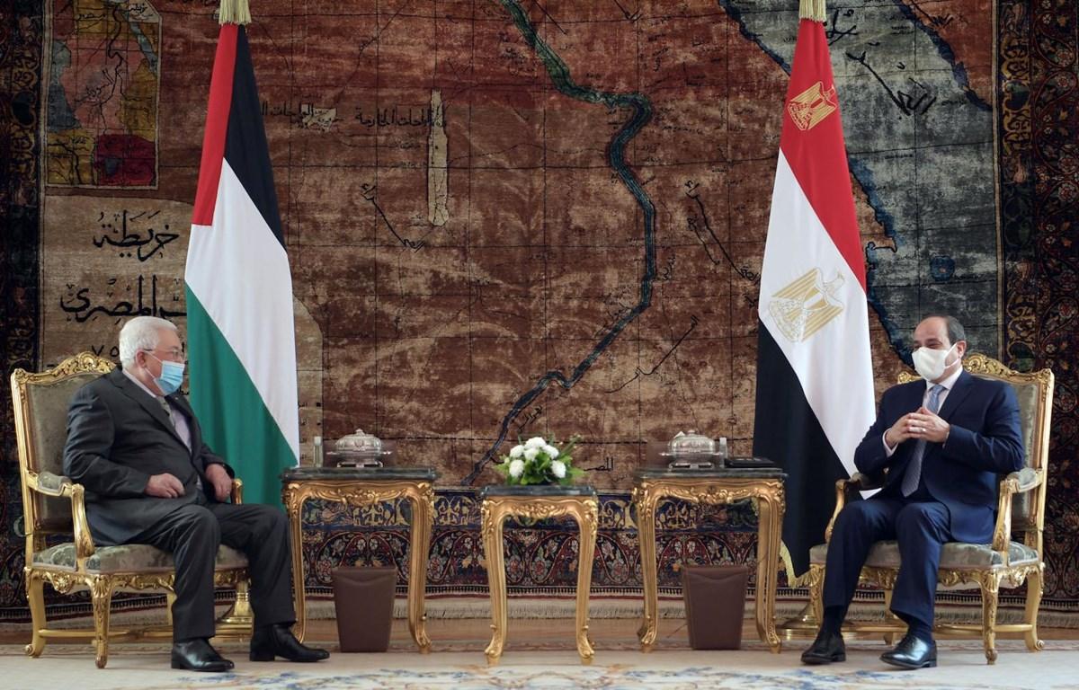Tổng thống Ai Cập Abdel-Fattah El-Sisi (phải) hội đàm với Tổng thống Palestine Mahmoud Abbas. (Nguồn: WAFA)
