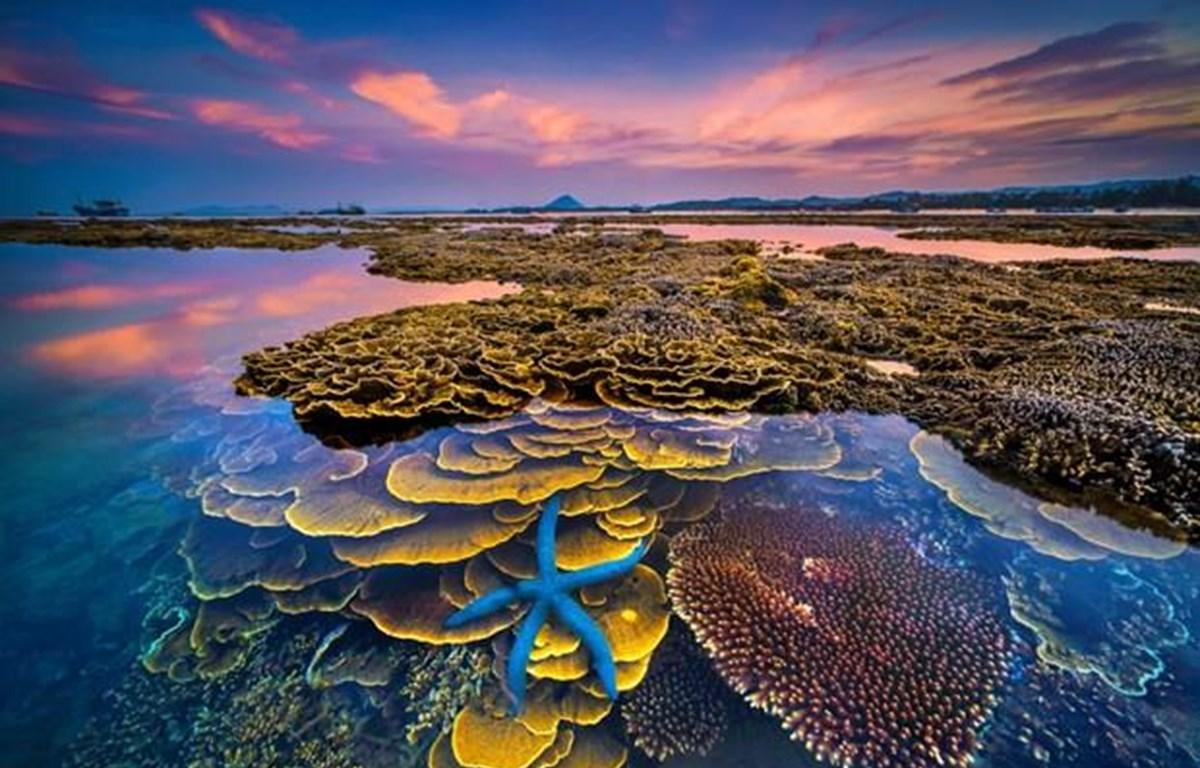"""Tác phẩm Giải nhất """"Sắc màu của biển"""" (Tác giả Trần Bảo Hòa) - Cuộc thi Ảnh nghệ thuật Du lịch toàn quốc lần thứ 8."""