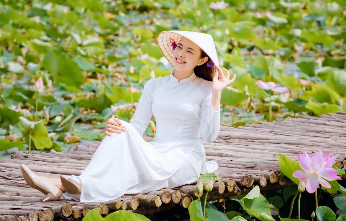 Đầm sen Vân Long tuyệt đẹp đã bung nở ngát hương. (Ảnh: CTV/Vietnam+)