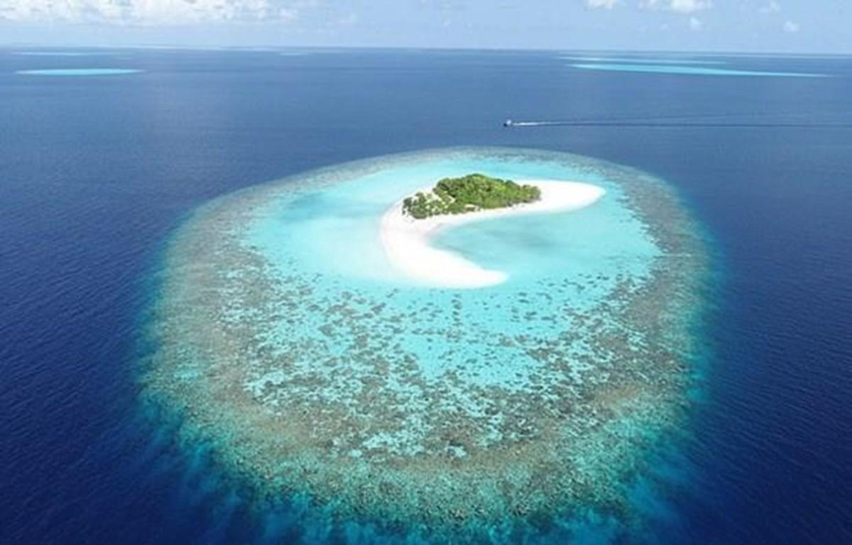 Đảo san hô ở Maldives. (Nguồn: dailymail.co.uk)