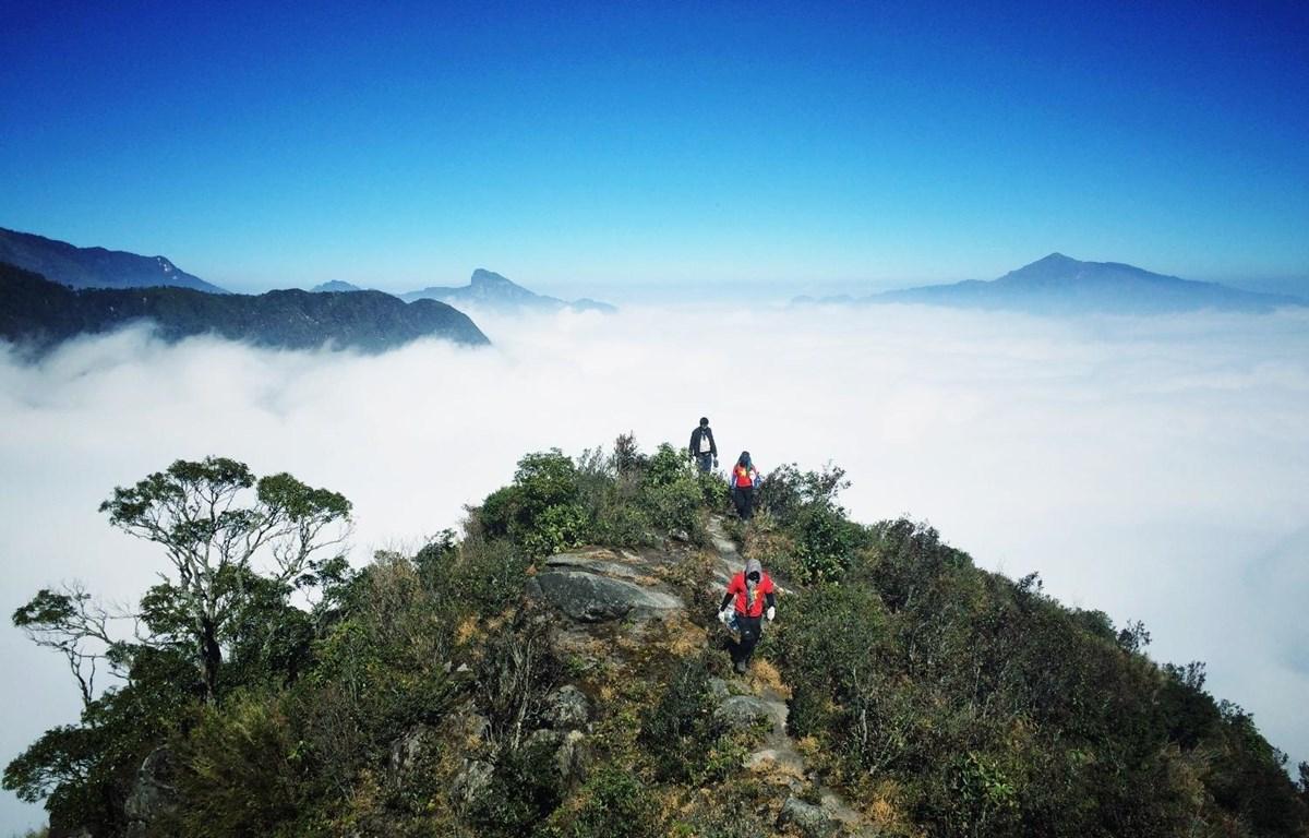 Một bộ phận giới trẻ Việt Nam rất thích leo núi để khám phá vẻ đẹp hoang dã của tự nhiên. (Ảnh: Xuân Mai/Vietnam+)