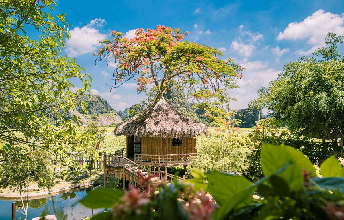 Một góc khu nghỉ dưỡng ngay giữa đầm sen ở Ninh Bình. (Ảnh: PV/Vienam+)