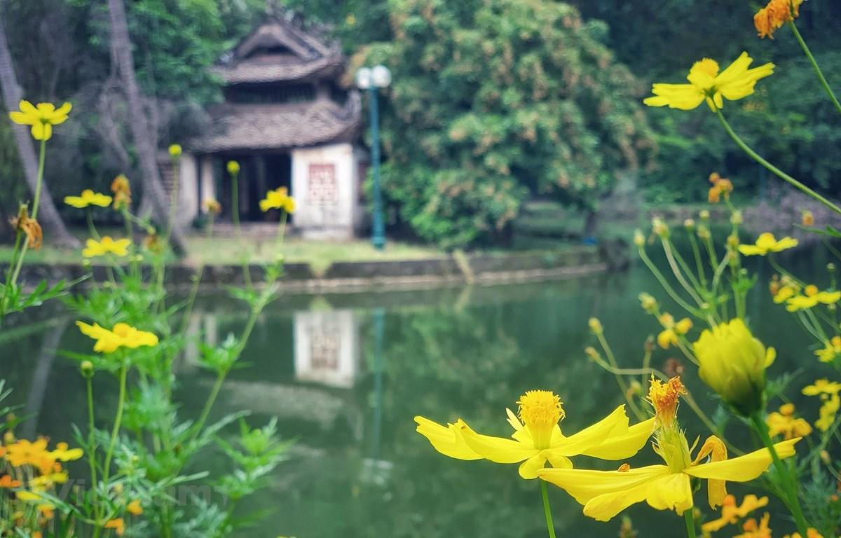 Du lịch Việt trong 6 tháng cuối năm liệu có cơ hội khởi sắc? (Ảnh minh họa: Mai Mai/Vietnam+)