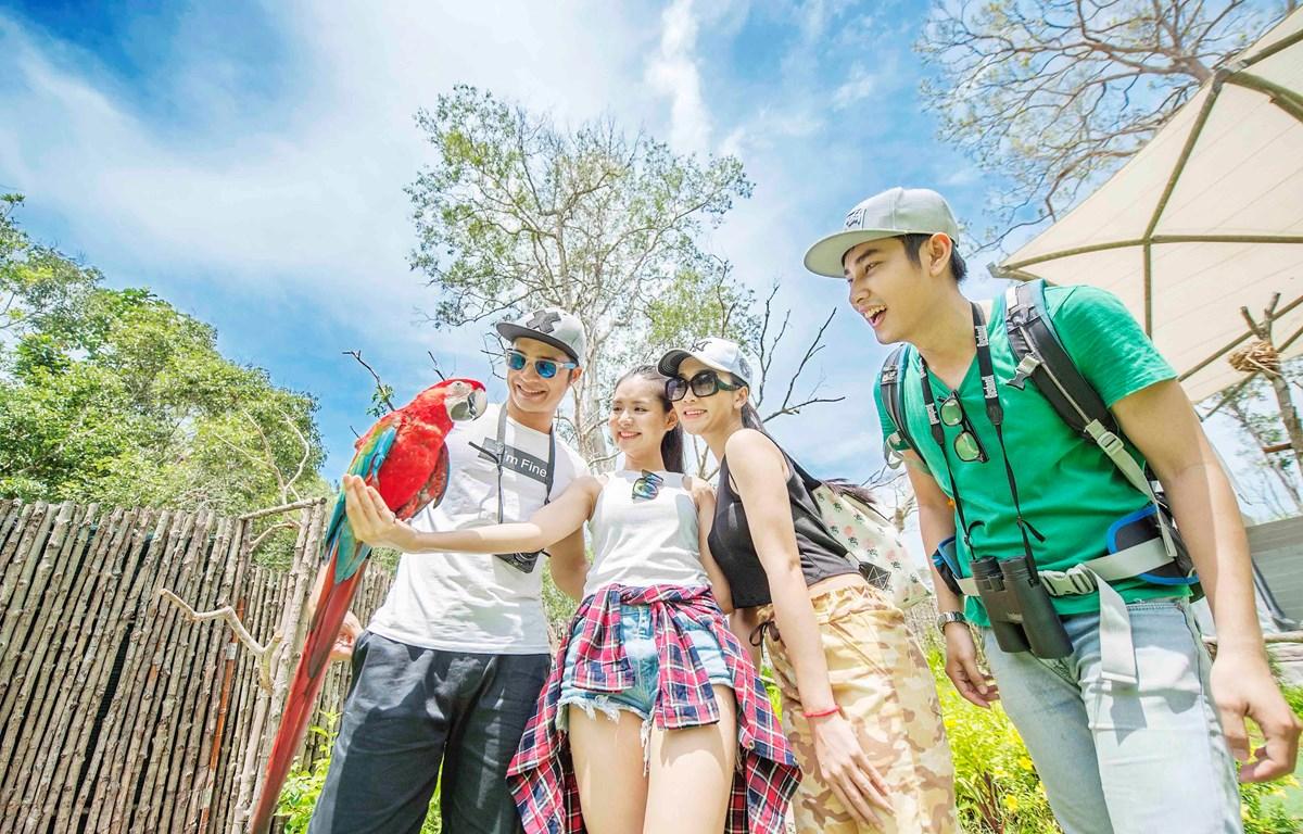 Lãnh đạo ngành đề xuất triển khai phương án đón khách quốc tế đến Phú Quốc từ trung tuần tháng Mười Một tới.(Ảnh minh họa: CTV/Vietnam+)