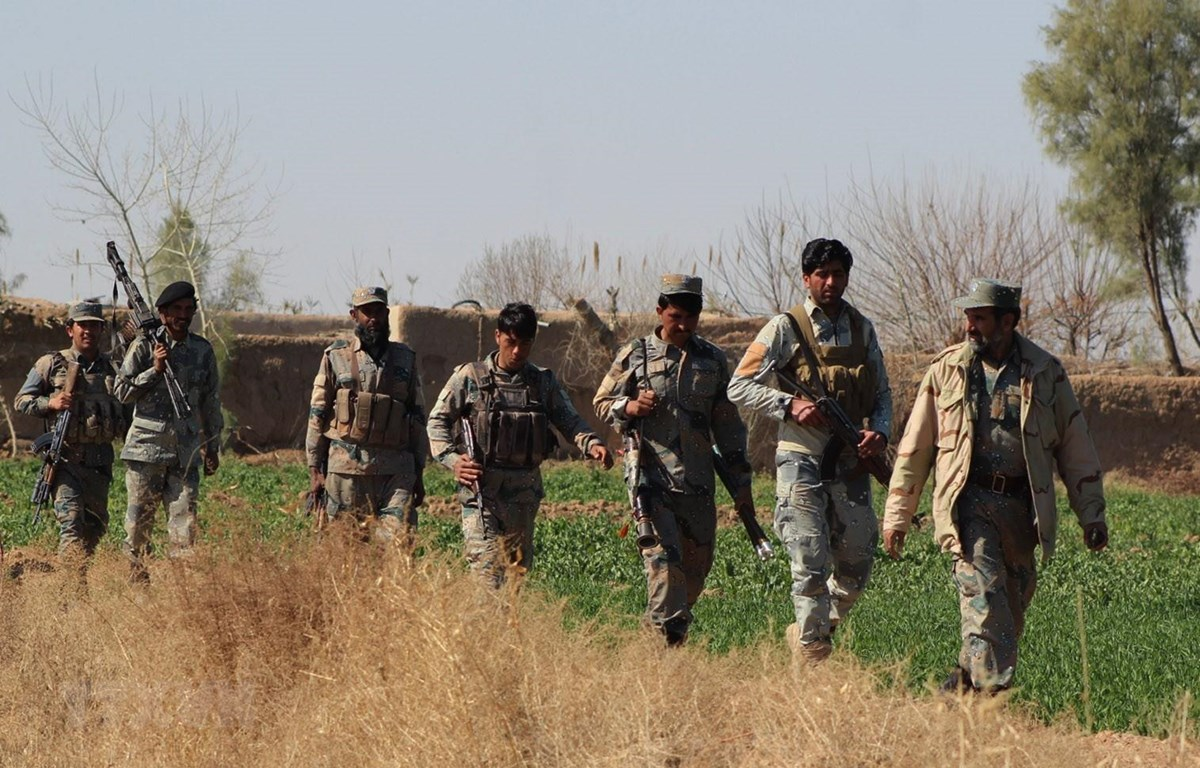 Binh sỹ Afghanistan trong chiến dịch truy quét phiến quân tại tỉnh Helmand. (Ảnh: THX/TTXVN)