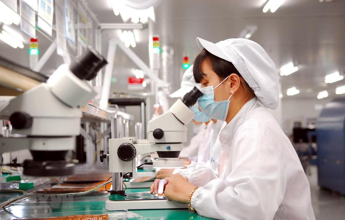 Dây chuyền sản xuất linh kiện điện tử tại Công ty TNHH Synopex Việt Nam (vốn đầu tư của Hàn Quốc). (Ảnh: Danh Lam/TTXVN)
