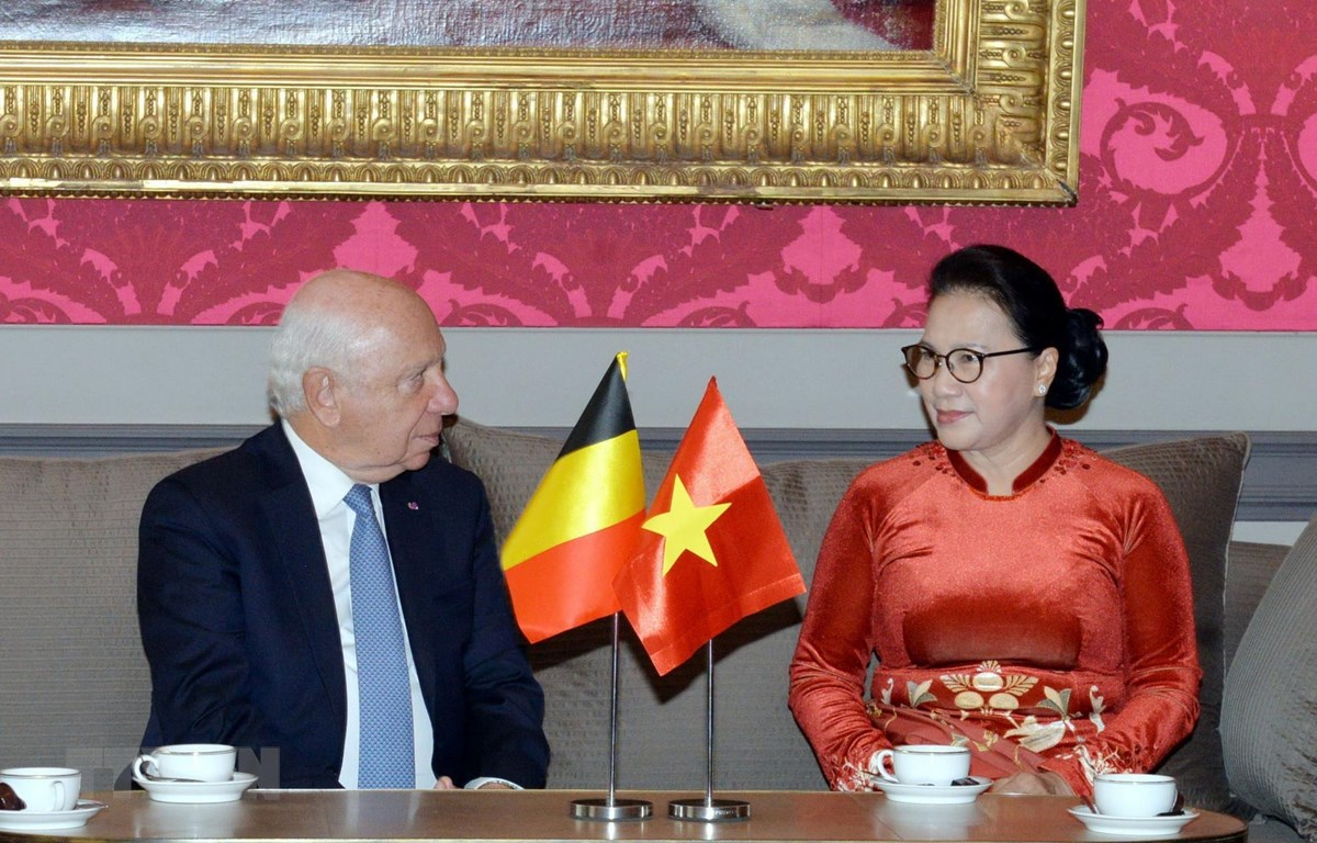 Chủ tịch Quốc hội Nguyễn Thị Kim Ngân hội kiến với Chủ tịch Thượng viện Bỉ Jacques Brotchi. (Ảnh: Trọng Đức/TTXVN)
