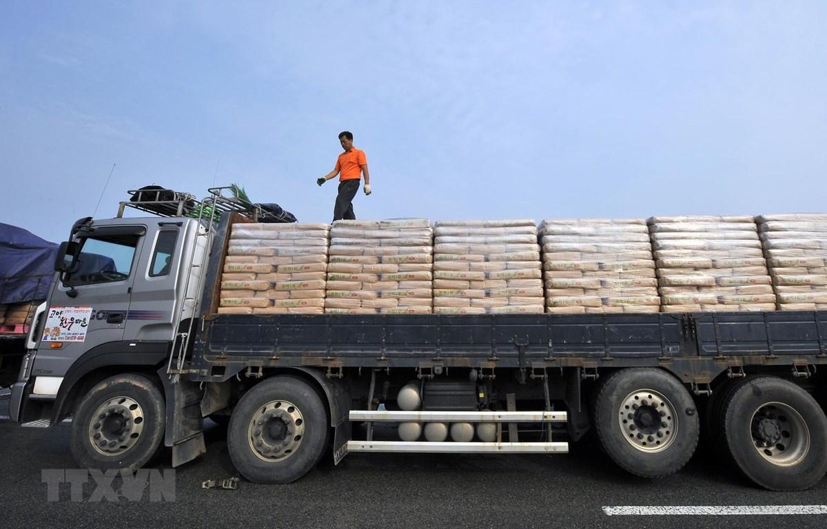 Xe tải của Hàn Quốc chở bột mì viện trợ cho Triều Tiên ngày 26/7/2011. (Ảnh: AFP/TTXVN)