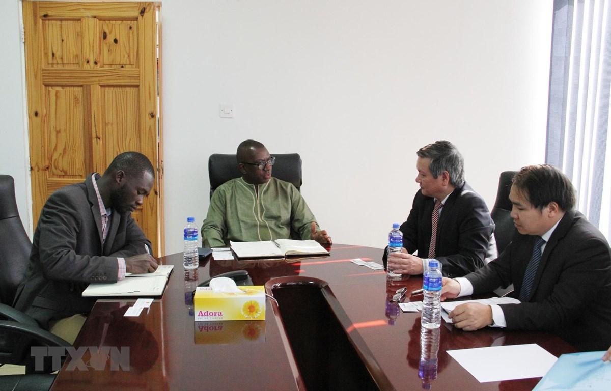 Đoàn công tác do Đại sứ Phạm Quốc Trụ dẫn đầu làm việc với Phòng Thương mại và Công nghiệp Gambia (GCCI). (Ảnh: Tấn Đạt/TTXVN)
