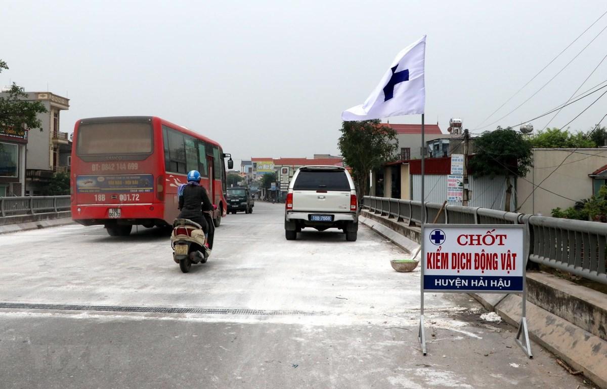 Chốt kiểm dịch trên địa bàn huyện Hải Hậu, tỉnh Nam Định. (Ảnh: Văn Đạt/TTXVN)
