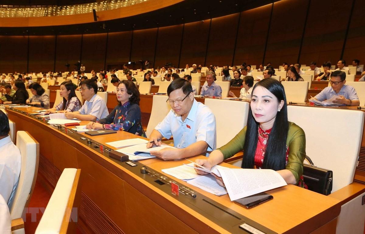 Đoàn đại biểu Quốc hội tỉnh Vĩnh Phúc tại phiên họp sáng 23/5. (Ảnh: Doãn Tấn/TTXVN)