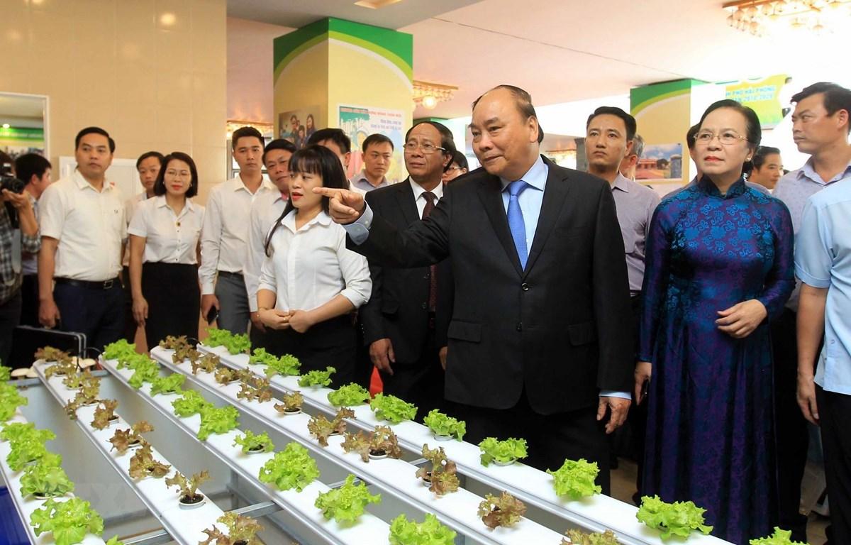 Thủ tướng Nguyễn Xuân Phúc tham quan mô hình và các gian hàng trưng bày sản phẩm nông nghiệp của thành phố Hải Phòng. (Ảnh: An Đăng/TTXVN)