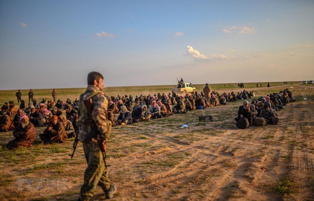 Các tay súng IS đầu hàng Lực lượng Dân chủ Syria được Mỹ hậu thuẫn tại Baghouz, miền Đông Syria ngày 22/2/2019. (Ảnh: AFP/TTXVN)