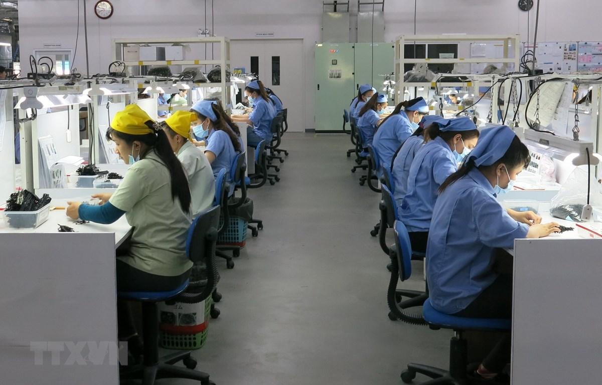 Hoạt động sản xuất sản phẩm linh kiện điện tử tại Công ty Trách nhiệm hữu hạn TPR Việt Nam tại khu công nghiệp Vsip 2 Bình Dương. (Ảnh: Hải Âu/TTXVN)