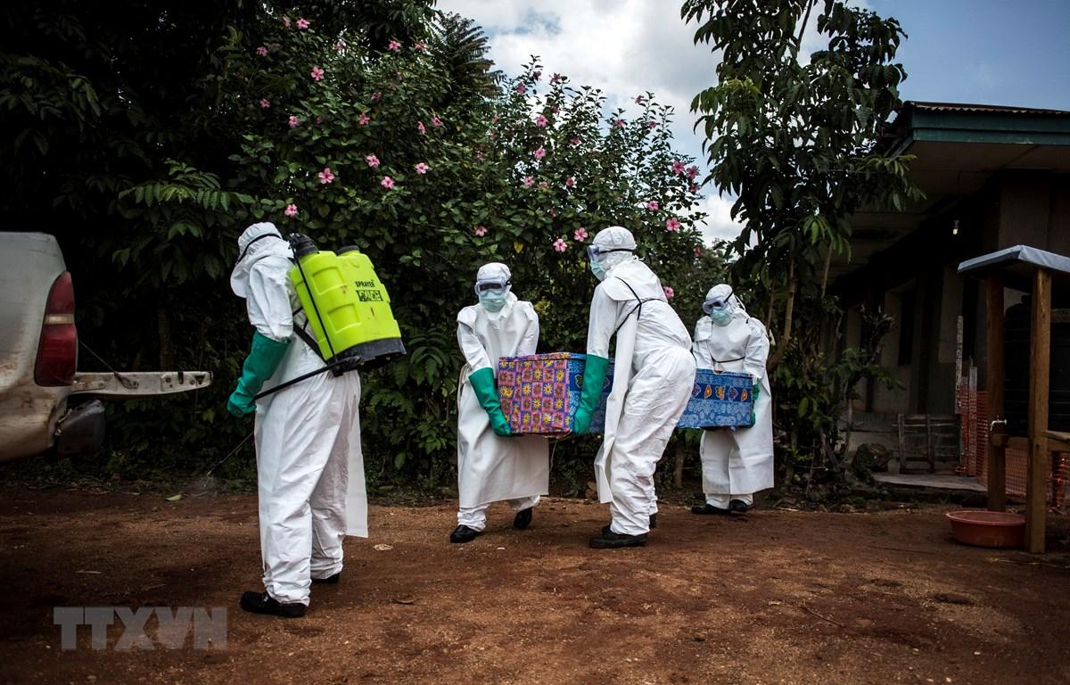 Nhân viên y tế chuyển thi thể bệnh nhân nghi nhiễm Ebola tại Mangina, gần Beni, tỉnh Bắc Kivu, Cộng hòa Dân chủ Congo năm 2018. (Ảnh: AFP/TTXVN)