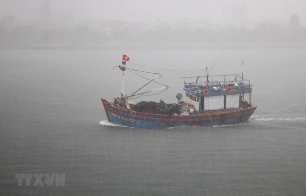 Tàu thuyền di chuyển vào neo đậu tại khu tránh trú bão Nhật Lệ. (Ảnh: Văn Tý/TTXVN)