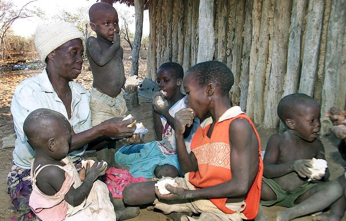 Phân phát khẩu phần ăn bánh mỳ cứu trợ của WFP tại một gia đình ở Binga, Zimbabwe. (Ảnh: AFP/TTXVN)