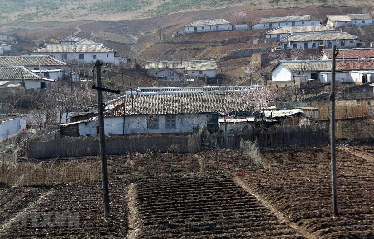 Đất trồng trọt khô hạn tại Nampho, tỉnh Nam Phyongan, Triều Tiên. (Ảnh: AFP/TTXVN)