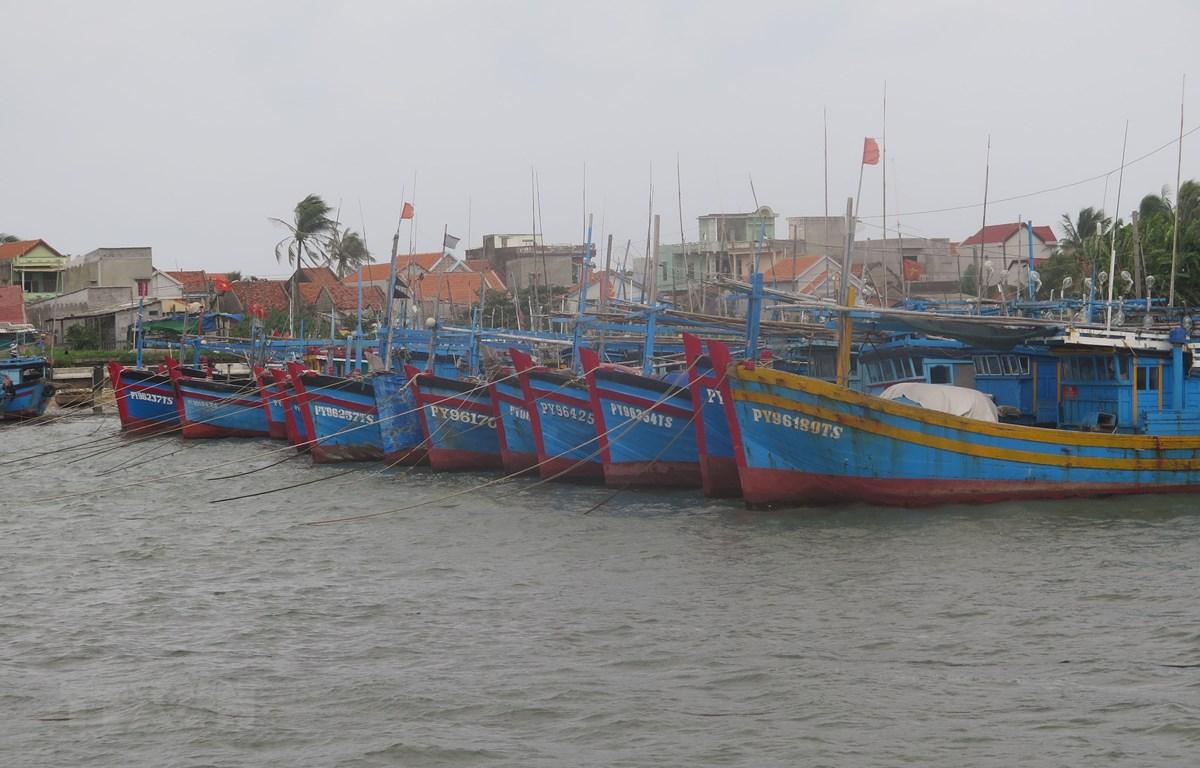 Các tàu thuyền đánh bắt thủy sản neo đậu tránh bão tại cảng cá Đông Tác, phường Phú Đông, thành phố Tuy Hòa, Phú Yên. (Ảnh: Phạm Cường/TTXVN)