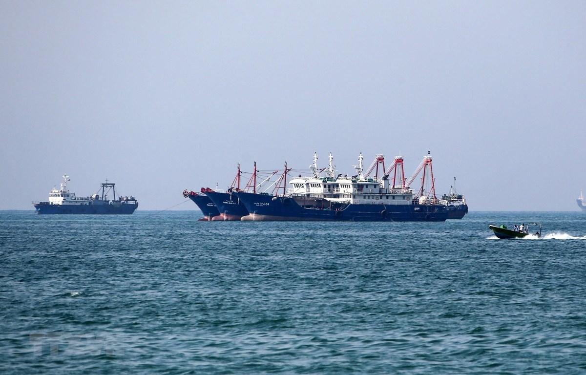 Tàu chở hàng tại khu vực vùng Vịnh, ngoài khơi thành phố cảng Bandar Abbas của Iran. (Ảnh: AFP/TTXVN)