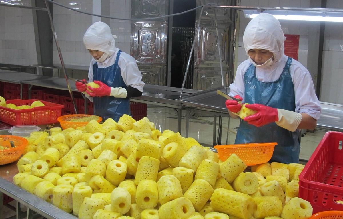 Chế biến dứa tại Công ty cổ phần Thực phẩm xuất khẩu Đồng Giao, thành phố Tam Điệp, Ninh Bình. (Ảnh: Thùy Dung/TTXVN)